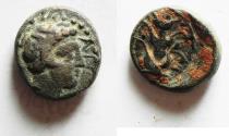 Ancient Coins - KYRENAICA, Kyrene. Circa 308-277 BC. Æ 14
