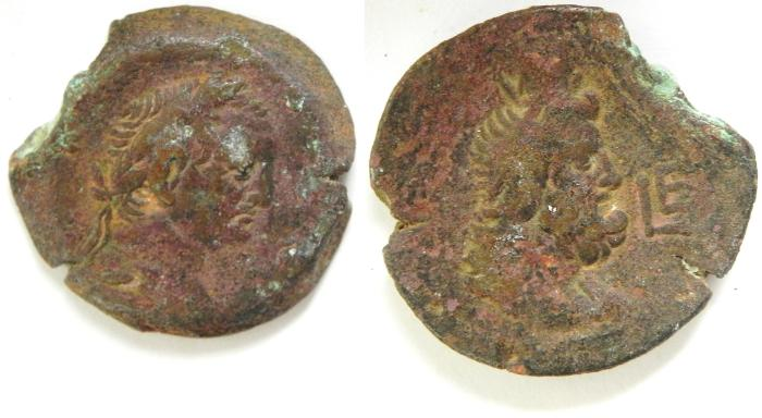 Ancient Coins -   EGYPT , ALEXANDRIA , VESPASIAN . SERAPIS AE DIOBOL