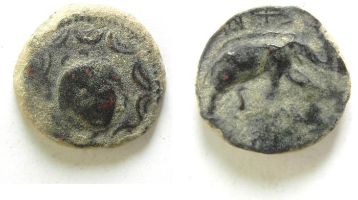 Ancient Coins - SELEUCID KINGDOM , SELEUKOS I AE 18