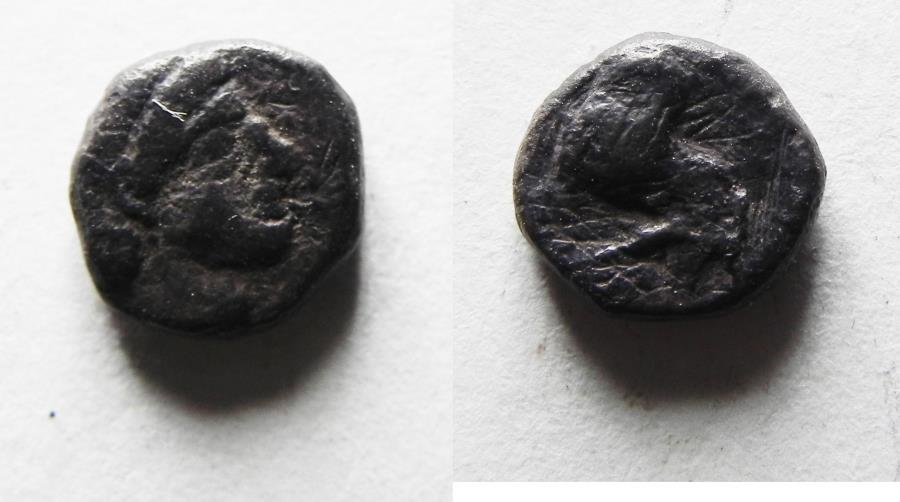 Ancient Coins - GREEK. Philistia. Gaza. AR obol (7mm, 0.66g). Struck fourth century BC.