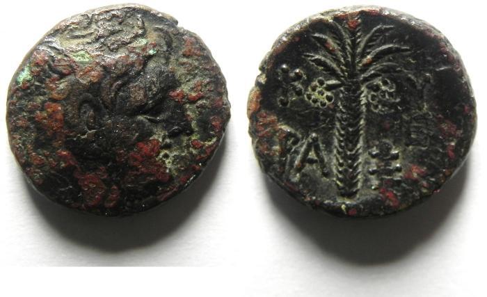 Ancient Coins - Cyrene, Cyrenaica, AE17, Magus as Governor, c. 300-277