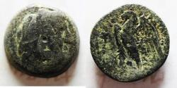 Ancient Coins - PTOLEMAIC KINGDOM. PTOLEMY II AE 22
