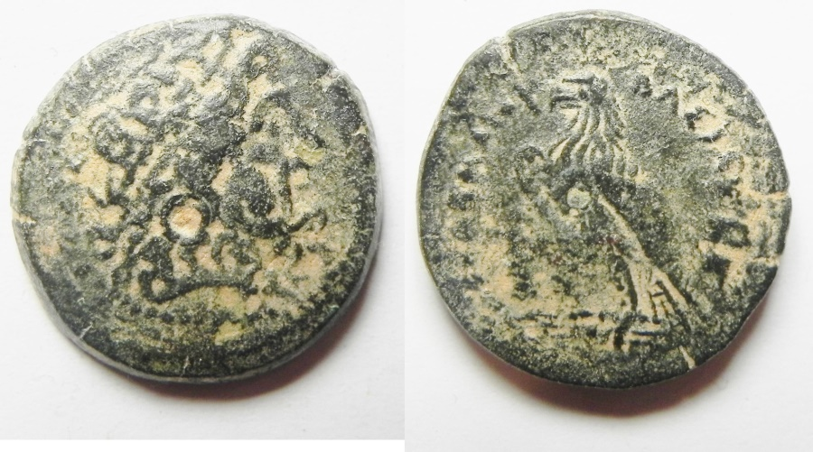 Ancient Coins - PTOLEMAIC KINGDOM. PTOLEMY II AE 19. TYRE MINT