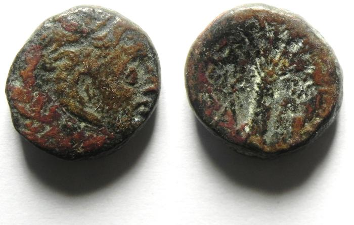 Ancient Coins - Cyrene, Cyrenaica, AE17, Magus as Governor, c. 300-277