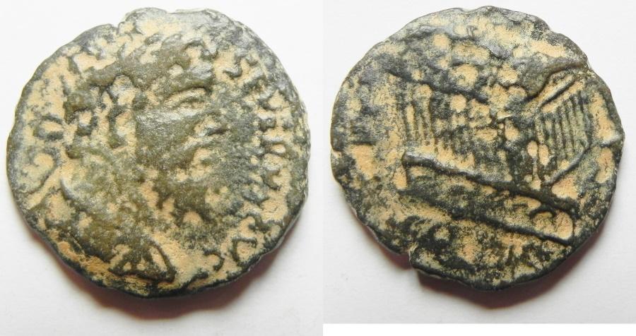 Ancient Coins - Coele Syria. Heliopolis under Caracalla (AD 198-217). AE 24mm, 8.09g. Commemorative issue honoring Divus Septimius Severus