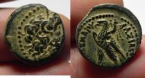 Ancient Coins - PTOLEMAIC KINGDOM . PTOLEMY II AE 16