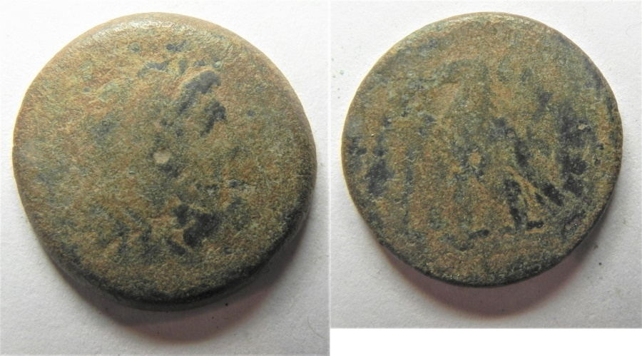 Ancient Coins - PTOLEMAIC KINGS. PTOLEMY II AE 19MM. AS FOUND