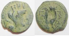 Ancient Coins - DECAPOLIS. GADARA. EARLY COINAGE. 47/ 46 B.C . AE 18