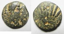 Ancient Coins - EGYPT. ALEXANDRIA UNDER AUGUSTUS (27 BC-AD 14). AE DIOBOL (25MM , 9.39G). CORN BUNDLE
