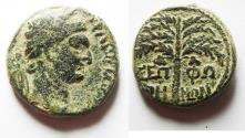 Ancient Coins - JUDAEA. SEPPHORIS . TRAJAN AE 22