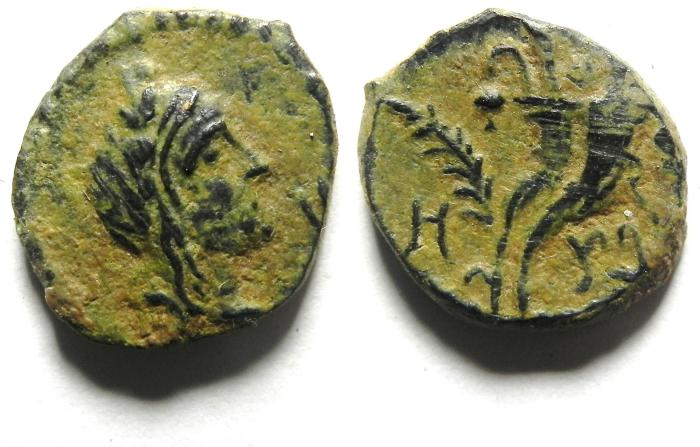Ancient Coins - BEAUTIFULL NABATAEAN AE 15 , ARETAS IV's SON - PHASAEL , NICE PATINA!