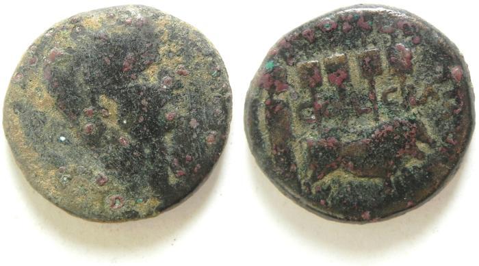 Ancient Coins - Phoenicia, Berytus. AUGUSTUS AE 24