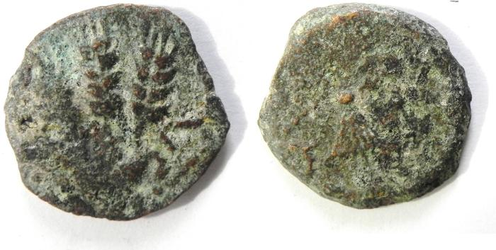 Ancient Coins - JUDAEA AGRIPPA I PRUTAH