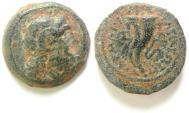 Ancient Coins - Ptolemaic Kingdom. Ptolemy IX Soter II (Lathyros). 116-106 B.C. Æ. Cyrene.