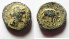 Ancient Coins - Seleukid Kingdom. Antiochos III. 223-187 BC. AE 16. Elephant reverse.