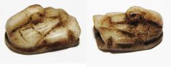 Ancient Coins - ANCIENT EGYPT, NEW KINGDOM. STONE DUCK AMULET. 1400 B.C