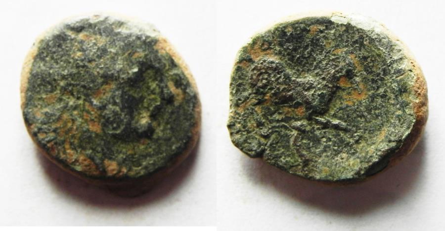 Ancient Coins - KYRENAICA, Kyrene. temp. Magas. As king of Kyrene, circa 282/75-261 BC. Æ 17