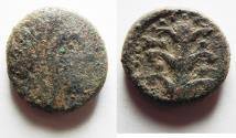 Ancient Coins - KYRENAICA, Kyrene. Circa 308-277 BC. Æ 22.