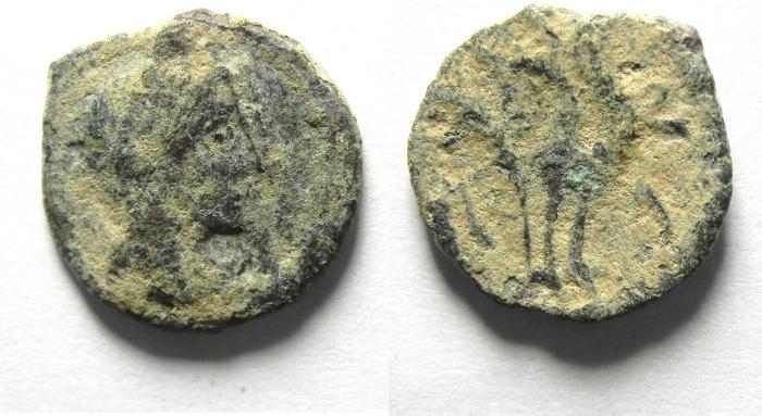 Ancient Coins - NABATAEAN , RARE COIN OF PHASAEL , ARETAS IV SON , AS FOUND