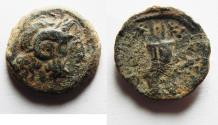 Ancient Coins - PTOLEMAIC KINGS of EGYPT. Ptolemy IX Soter II. 115-104/1 BC. Æ 19mm. Kyrene mint.