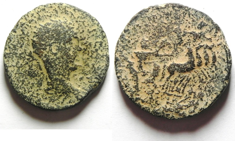 Ancient Coins - PROVINCIAL COIN FROM SYRIA , AE 29