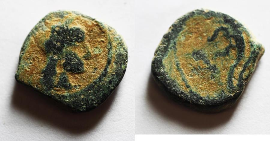 Ancient Coins - NABATAEAN KINGDOM. ARETAS IV'S SON , PHASAEL AE 14