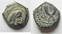 Ancient Coins - NABATAEAN KINGDOM. SYLLAUES AE 13