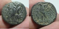 Ancient Coins - PTOLEMAIC KINGDOM. PTOLEMY II AE 28