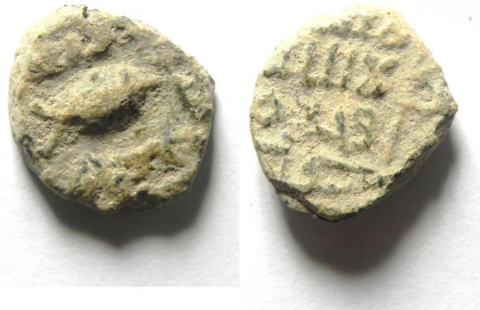 World Coins - UMMAYED ISLAMIC AE FALS  , FISH , TIBERIAS