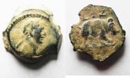 Ancient Coins - Rhinoceros: EGYPT, Alexandria. Trajan. AD 98-117. AE DICHALKON
