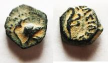 Ancient Coins - NICE QUALITY FOR THE TYPE: SELEUKID KINGS of SYRIA. Antiochos VII. 138-129 BC. Æ 11. Askalon mint.