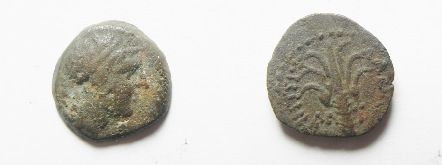 Ancient Coins - SELEUKID AE 14. TYRE MINT