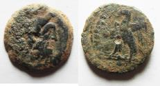 Ancient Coins - AS FOUND: Ptolemaic Kingdom. Ptolemy VIII Euergetes II (Physcon). Second reign, 145-116 B.C. Æ. Cyrene.