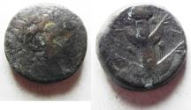 Ancient Coins - KYRENAIKA, Koinon. Circa 250 BC. Æ 21