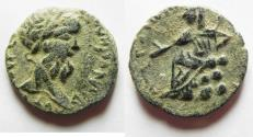 Ancient Coins - ARABIA. PETRA. SEPTEMIUS SEVERUS AE 22. NICE QUALITY FOR THE TYPE
