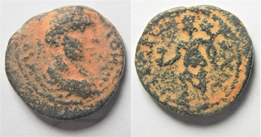 Ancient Coins - WITH NO DATE: Decapolis. Medaba under Caracalla (AD 198-218). AE 19mm, 6.82g.