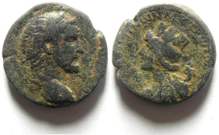Ancient Coins - SYRIA , ANTONINUS PIUS AE 23