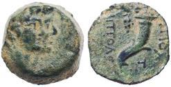 Ancient Coins - Akko-Ptolemais AE under Seleucid Rule, VF, 125 - 121 B.C.E.