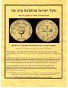Ancient Coins - Parchment Paper - Description in Detail & Authenticity Certificate International