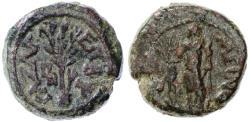 Ancient Coins - Gaza AE under Hadrian, Very Fine, RARE! 131/132 C.E.