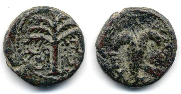 Ancient Coins - Bar Kochba Small Bronze, Palm and Grapes, AVF