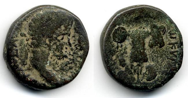 Ancient Coins - Caesarea, Titus, Judaea Capta, AF