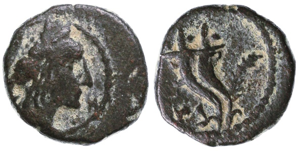 World Coins - Aretas IV in name of his son Phasael AE, Nabataea, Very Fine, Scarce, 5/4 B.C.E.