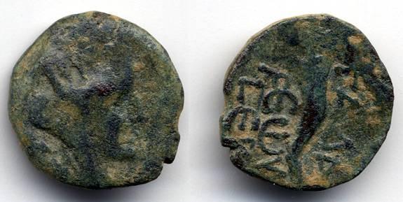 Ancient Coins - Gadara Early Autonomous Coin  Pompeian era