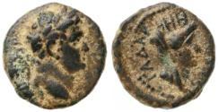 Ancient Coins - Gadara of the Decapolis, Titus AE, VF+/VF, 71 - 74 C.E.