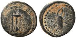 Ancient Coins - Antiochos I Soter AE, VERY RARE!, 281 - 261 B.C.E.