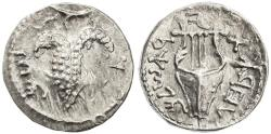 Ancient Coins - Shimon Bar Kokhba AR Zuz, Extremely Fine, Grapes/Lyre, 134/135 C.E.