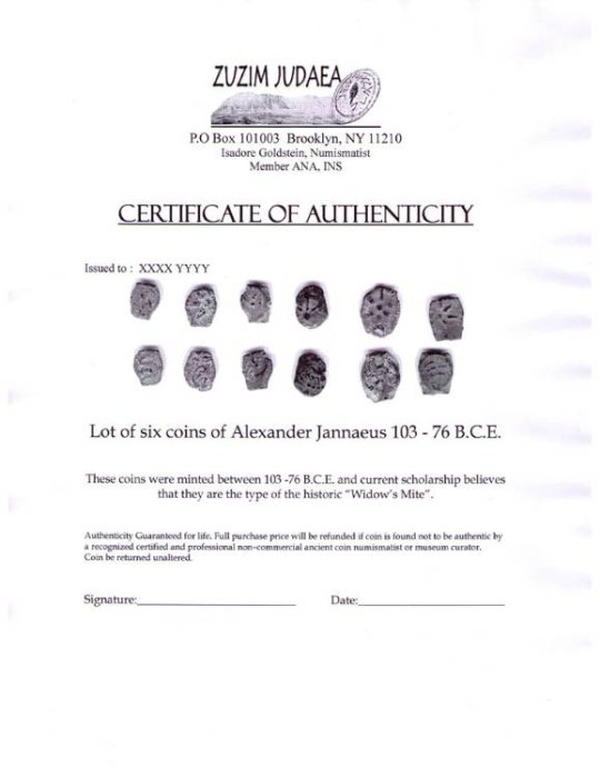 Ancient Coins - Authenticity Certificate Simple