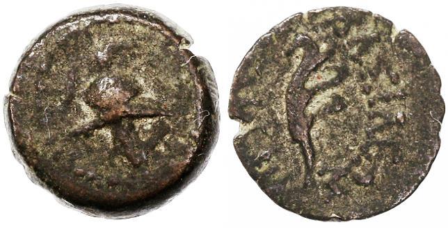 Ancient Coins - Antiochos VII AE, Scarce VF, Ascalon mint, John Hyrcanus 'prototype', 138 - 129 B.C.E.