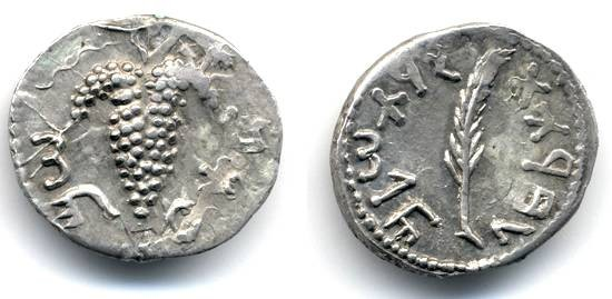 Ancient Coins - Bar Kochba AR ZUZ, Unusual and Rare clashed dies, Palm branch